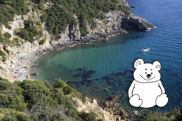 Buone vacanze dall'Orso Snupi!